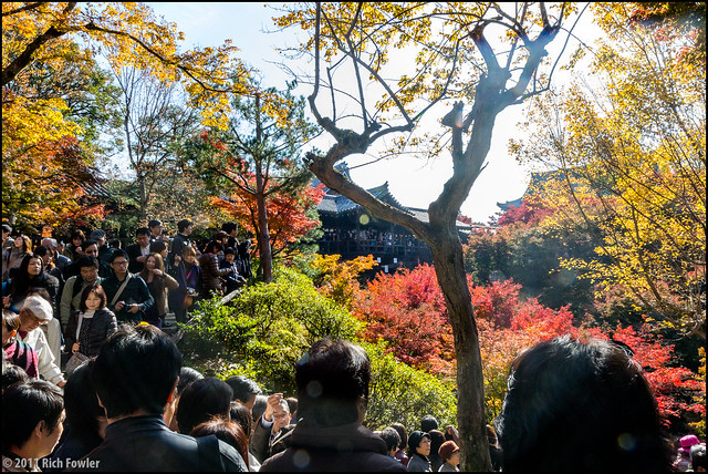 Tofukuji Temple, Fall Colors, and CROWDS