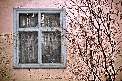 autumn trees sunset people tree fall window field grass leaves skyline fence sadness 50mm fly flying bush nikon arch village sad decay f14 curtain frame 28 nikkor 700 kazakhstan bushes derelict f28 horizont almaty ironcurtain fense кирилл kirill tuyuksu tuyuksuglacier алматы d700 дорохов 8озер dorokhov 8ozer 8ozyor falloftheironcurtain kirilldorokhov кириллдорохов