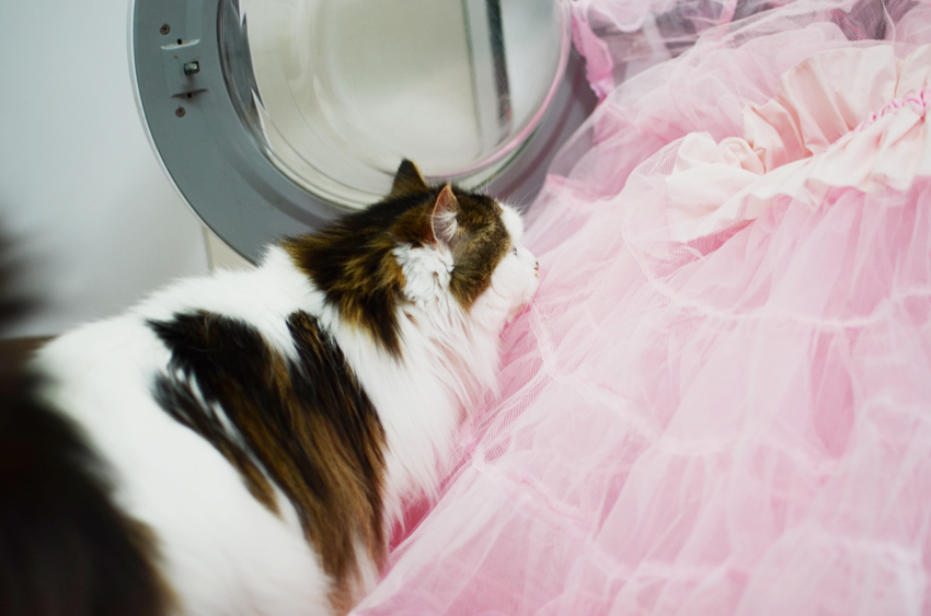 vintage-pink-petticoat e