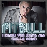 Pitbull – I Know You Want Me (Calle Ocho)