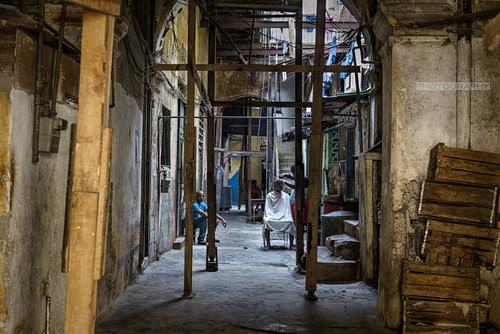 Barbero de solar by Rey Cuba