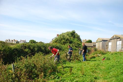 志工們協助移除圍籬