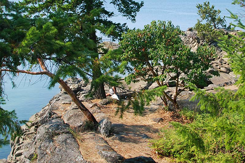 Pilkey Point on Thetis Island, Gulf Islands, Georgia Strait, British Columbia, Canada