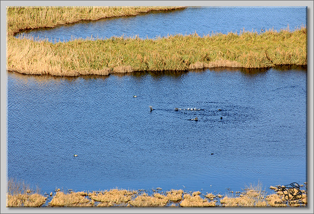 4 lagunas de Antuzanos