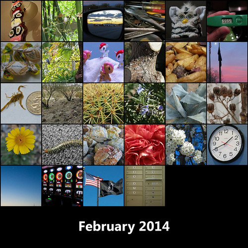 2014:365 February Mosaic