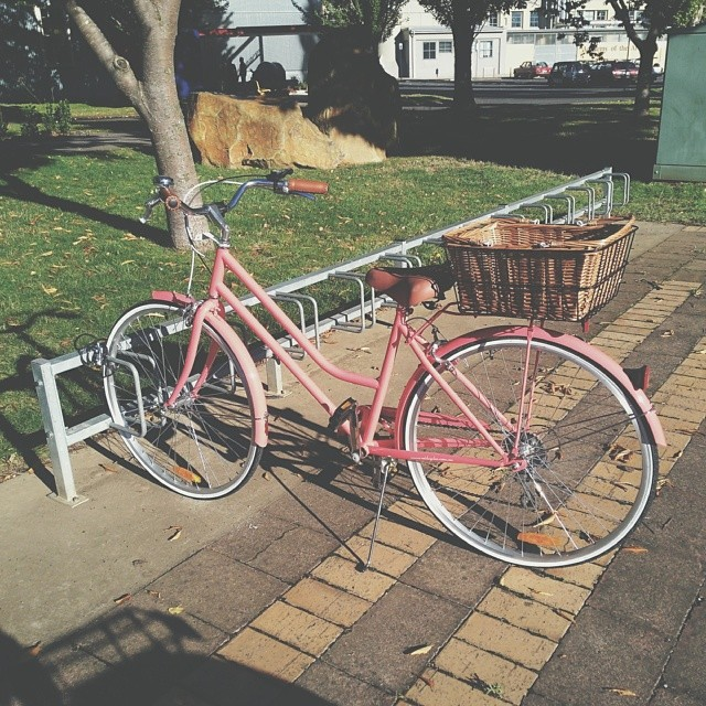 I keep seeing cute bikes at my uni and thought I'd start a hashtag for each time I see one #bikesoflaunceston #cutebike
