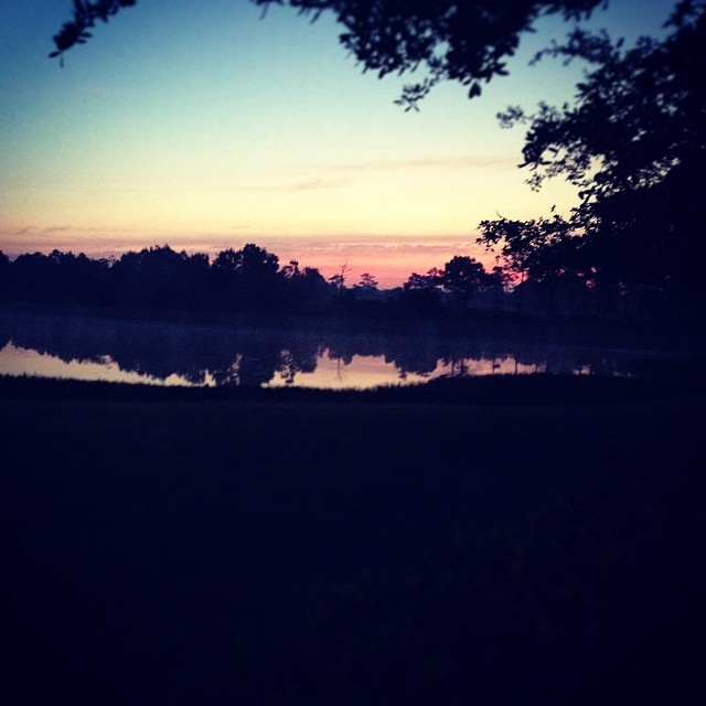 Low(er) humidity, no eaten bugs, and a view like this -- what's not to love? #running #wooendorphins