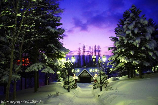 雪の美術館8