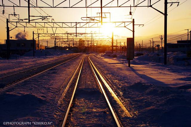 朝陽に光る鉄路