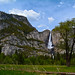 Cholock (The Falls)