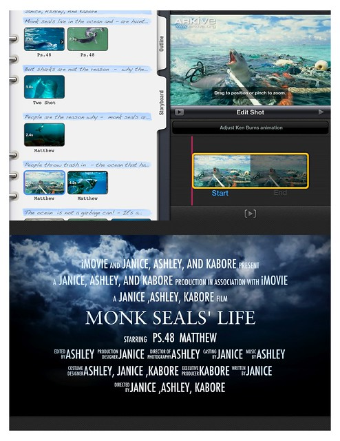 Monk_Seal_Poster