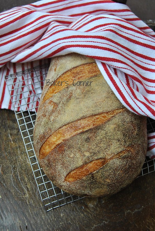 Semolina (durum wheat) flour sourdough bread