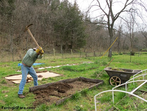 Attacking a neglected raised vegetable bed in the kitchen garden - FarmgirlFare.com