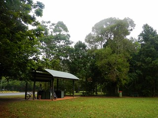Mary Cairncross Reserve