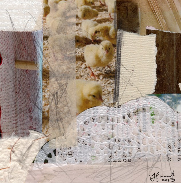Collage: Chicken Scratch
