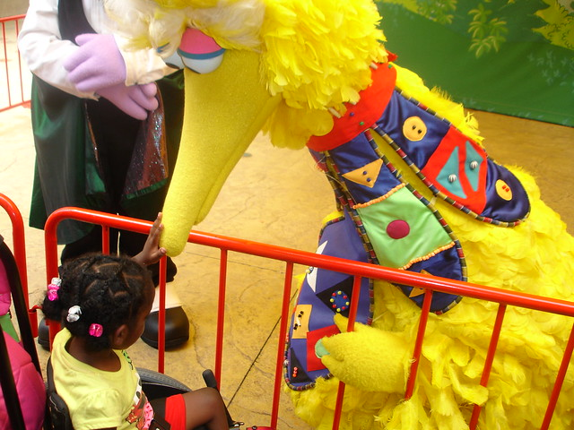Big Bird at Busch Gardens