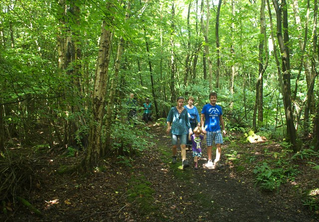 DSC_6963 woodland walk