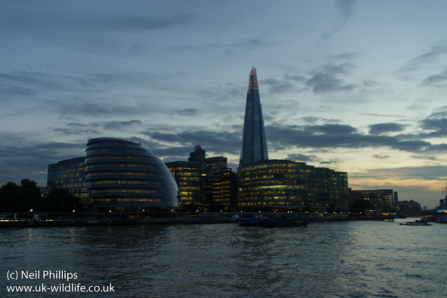 shard + Mayors office