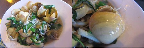 07-2013澎湖-雞蛋貝