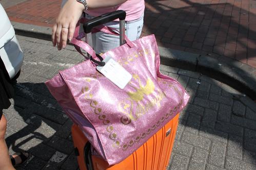 Glittery Bag