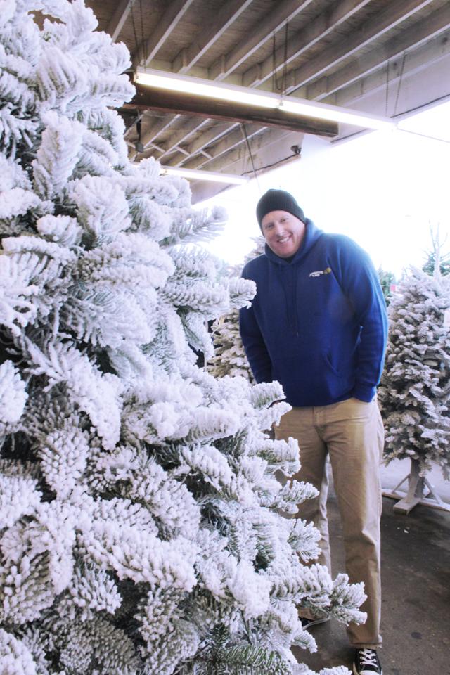 {december 1} our tree | ryan