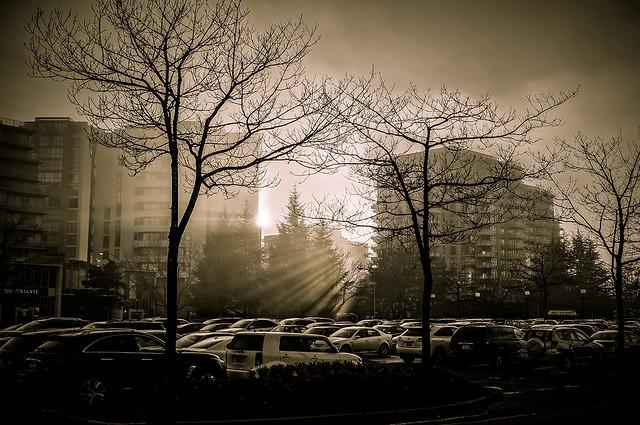 Sun VS. Fog