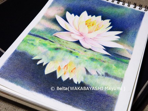 2014_01_31_waterlily_01_s by blue_belta
