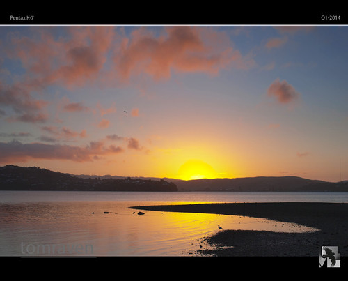 sunset sea sky sun heron water clouds reflections pentax seagull gull silhouettes valentines inlet limited k7 pauatahanui 35mmmacro dancinggull tomraven degull aravenimage q12014 {vision}:{outdoor}=0668 {vision}:{sky}=099 {vision}:{car}=0511 {vision}:{sunset}=0984 {vision}:{clouds}=099