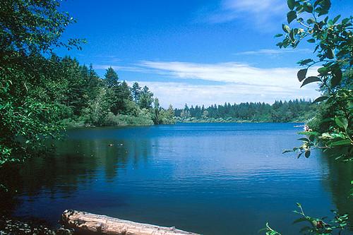 Beaver Lake in Elk/Beaver Lake Park, Saanich, Victoria, Vancouver Island, British Columbia, Canada