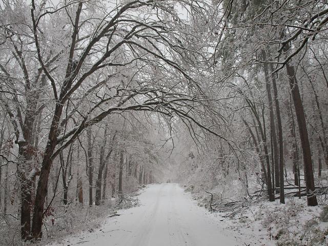 Winona Scenic Drive