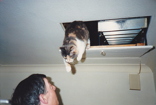 just you stay there! Daisy makes her escape from the loft.Dec 1987