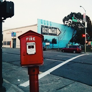 An interesting sight for a European in America: a fire alarm call box spotted while wandering in SF  #sf #sanfrancisco #street #firealarm #gamewell #callbox #streetsofsf #red #signs #intersection #trees #onetree #cars #vintage #sky #fog #city #soma #build