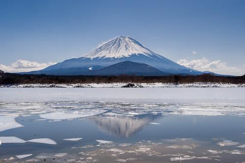 japan march spring fuji getty crazyshin yamanashi 2014 afsnikkor2470mmf28ged fujikawaguchikomachi order500 nikond4s 20140308ds10536 8970811 13018423033