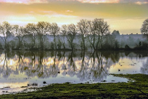 morning winter england mist fog sunrise day somerset bridgwater meads pwwinter
