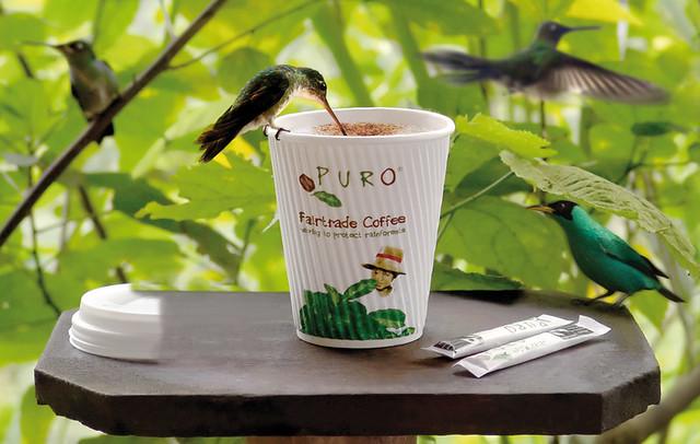 Puro_Hummingbird