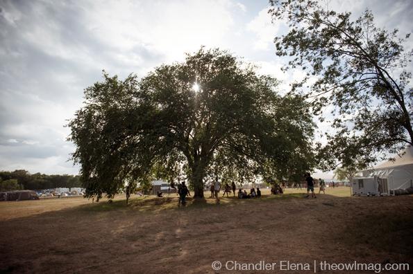 Austin Psych Fest 2014 - Sunday