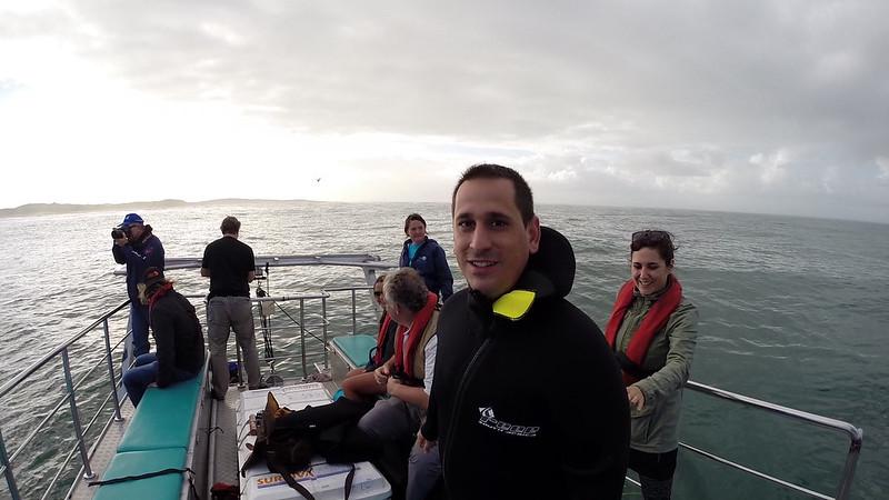 Sele en el barco de Gansbaai a punto de ver tiburones blancos (Sudáfrica)