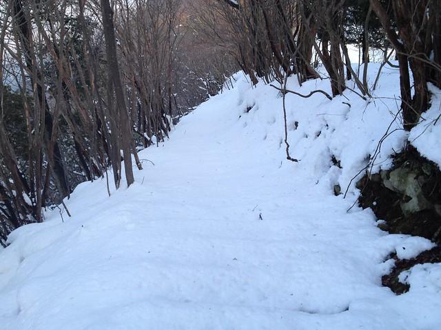 志津山 養老山頂登山道