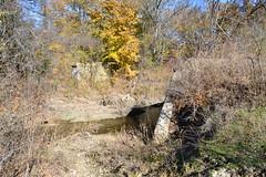 Bridge Supports at Cottonwood Creek, Allen, Texas 1411261352