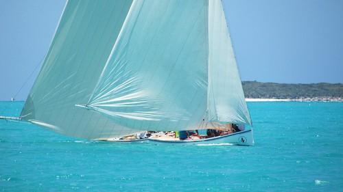 Sailing Regatta