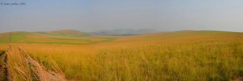 africa landscape nikon african congo paysage bruno savanah afrique brazzaville savane lacbleu lesiolouna brunoportier