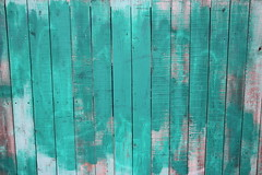 Another turquoise fence