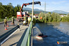 2016.06.27 - Bootsübung Drau - Schwaiger Brücke mit FF St.Peter-7.jpg