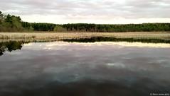 Post Farm Marsh, Lenox, Massachusetts at dawn