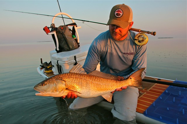 Florida Keys redfish