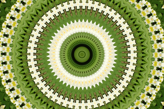 How to Create a Digital Kaleidoscope Mandala