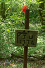 Gibbet Woods