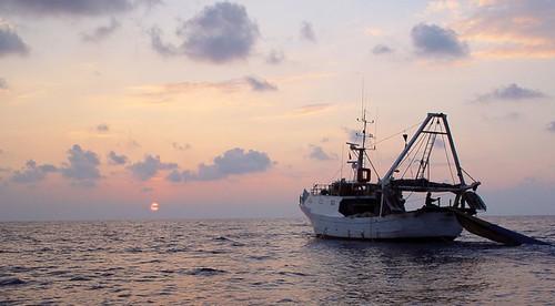 Lampedusa_001originale