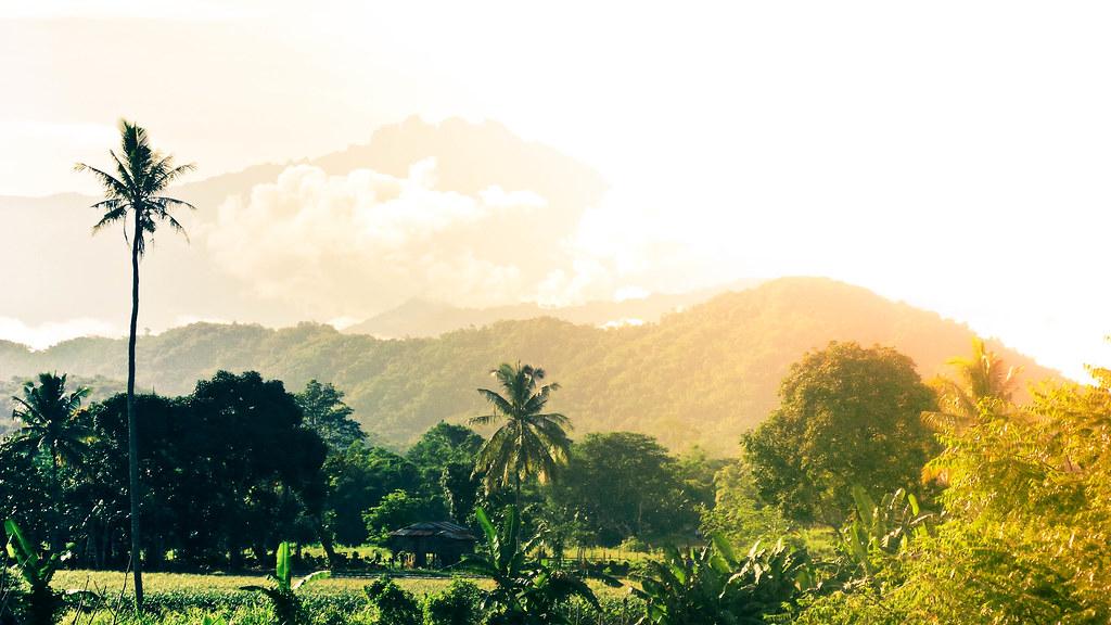 SGC - Landscape (3)