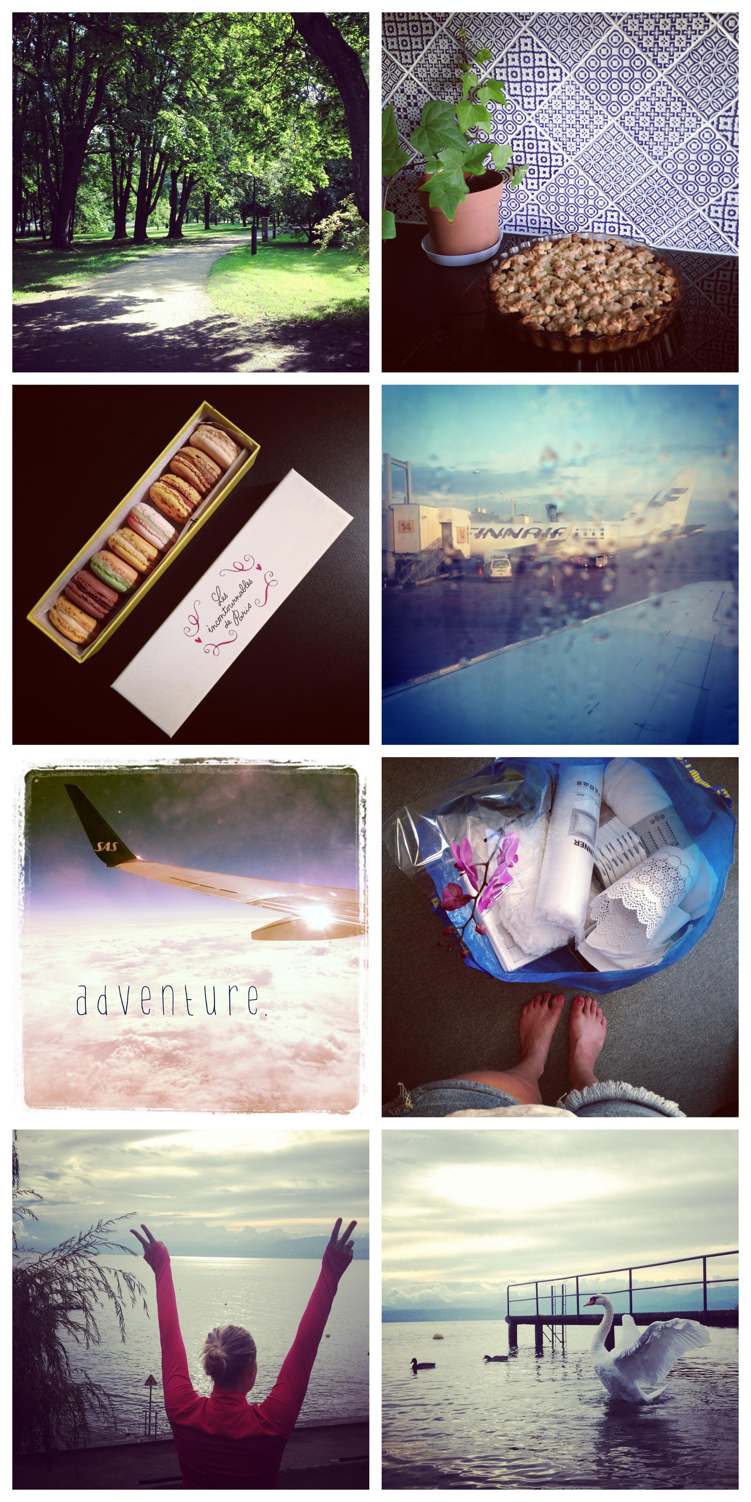 instagram 20138